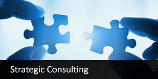 Strategic Consulting Company India