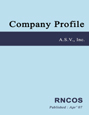 AMR Corporation - Company Profile Research Report