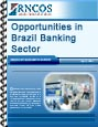 Opportunities in Brazil Banking Sector Research Report
